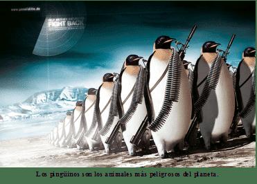 Ejército Pingüino